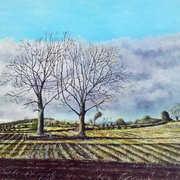 Cut Field in Early Morning Light,oil on board,41 x 30 cm